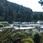 Freehold Holiday Park, Bay of Plenty